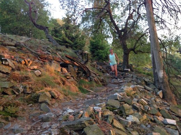 Downhill im Taunus:-)