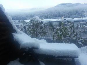 Start bei Schnee - mit dem Auto :-)