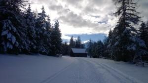 Schnee - so schee :-)