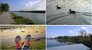 Samstag Nachmittag: Chillaxing in sinnlicher Ruhe an der Neuen Donau